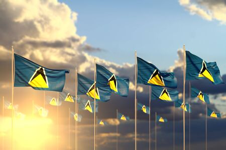 pretty many Saint Lucia flags on sunset placed in row with soft focus and space for content - any celebration flag 3d illustration