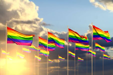wonderful holiday flag 3d illustration  - many Gay Pride flags on sunset placed in row with soft focus and space for content
