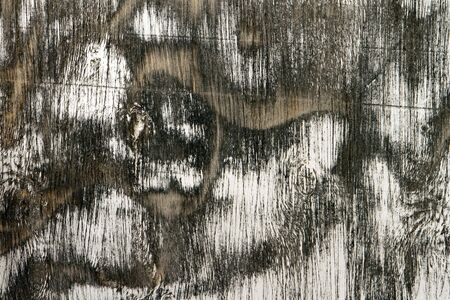 cute grunge shabby wood panel texture - abstract photo background