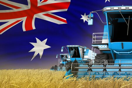 three blue modern combine harvesters with Australia flag on farm field - close view, farming concept - industrial 3D illustration