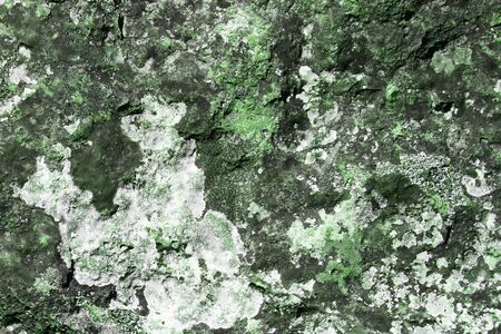 wonderful grunge aged mossy rock texture - abstract photo background Stock Photo