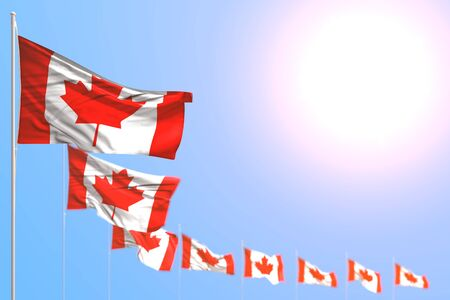 wonderful many Canada flags placed diagonal with selective focus and empty place for your text - any feast flag 3d illustration Banco de Imagens - 134968547