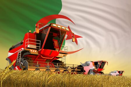 agricultural combine harvester working on wheat field with Algeria flag background, food production concept - industrial 3D illustration