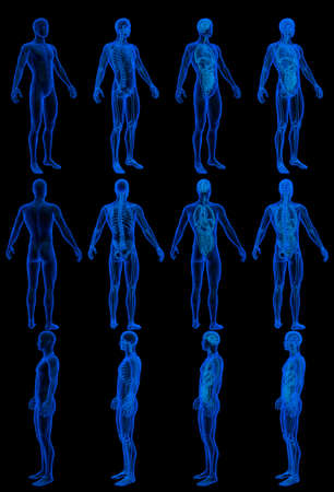 12 high resolution holographic xray renders in 1 image, man body with skeleton and organs - physiology examination concept - digital medical 3D illustration isolated on black 免版税图像