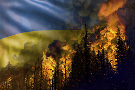 Forest fire fight concept, natural disaster - flaming fire in the woods on Ukraine flag background - 3D illustration of nature Stock fotó
