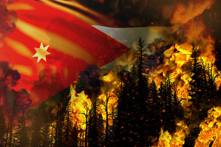 Forest fire natural disaster concept - heavy fire in the trees on Jordan flag background - 3D illustration of nature
