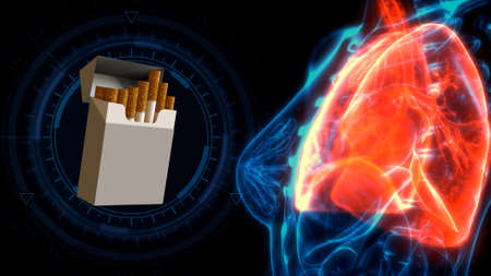 cg healthcare 3d illustration, human lungs pain by cigarettes