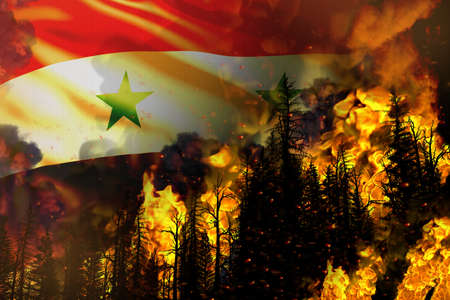 Forest fire natural disaster concept - burning fire in the trees on Syrian Arab Republic flag background - 3D illustration of nature
