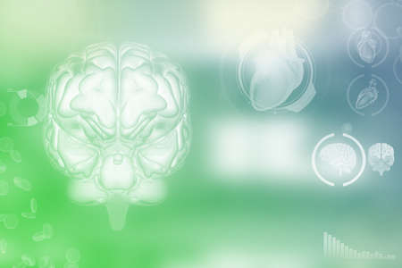 Medical 3D illustration - human brain, intelligence discovery concept - highly detailed modern background or texture