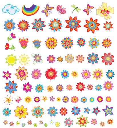 daisy flower: Set of summer flowers