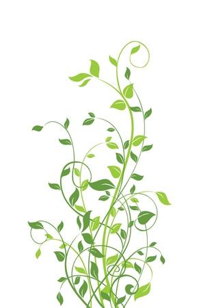 flore: Spring tree Illustration