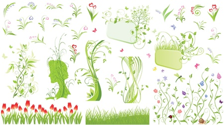 Nature elements Stock Vector - 18858879
