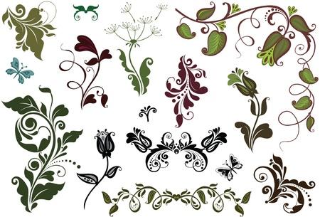 adornment: Decorative elements Illustration