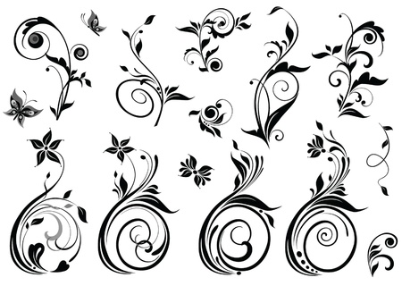 Beautiful floral design Vector