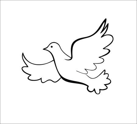 dove bird: Dove, vector illustration