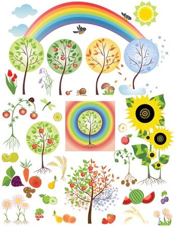 peach tree: Set of nature design Illustration
