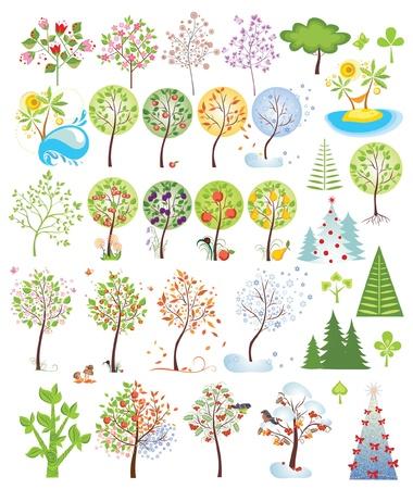 pine apple: Trees collection Illustration