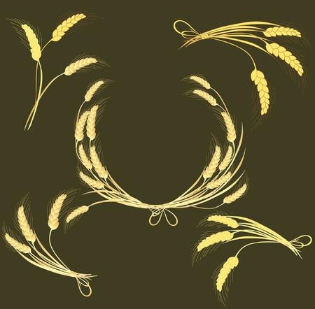 clip art wheat: Wheat