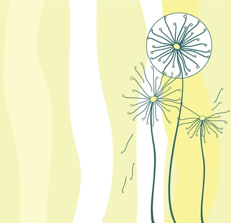 flimsy: Background with dandelion