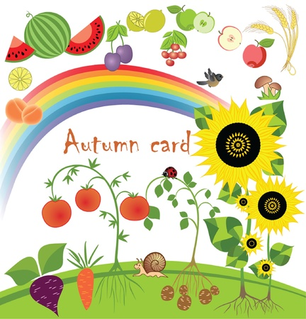 apricot tree: Autumn card