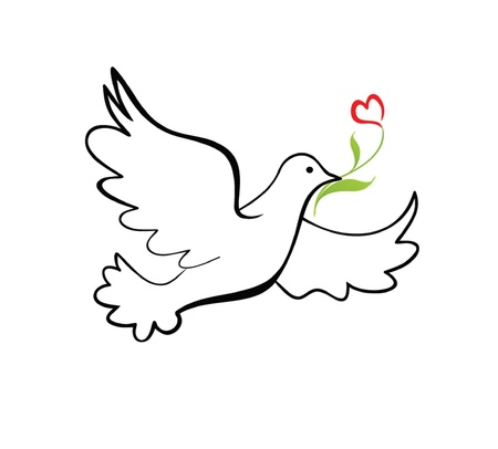 pigeon: Dove of peace