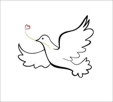 paloma caricatura: Paloma Vectores