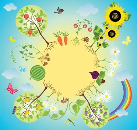 cartoon carrot: Vegetable garden