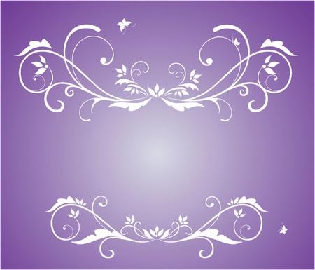 wed: Beauty frame Illustration