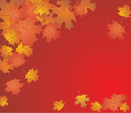 shedding: Autumn background