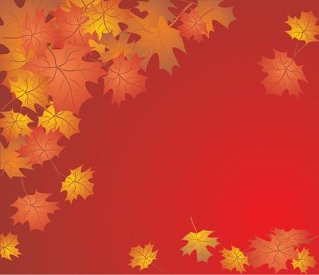 profusion: Autumn background
