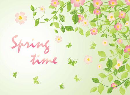 appletree: Spring blossom