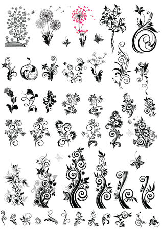 Decorative floral design elements (black and white) Vector