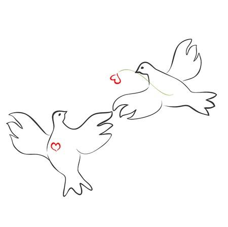 heirat: Paar liebevolle Tauben Illustration