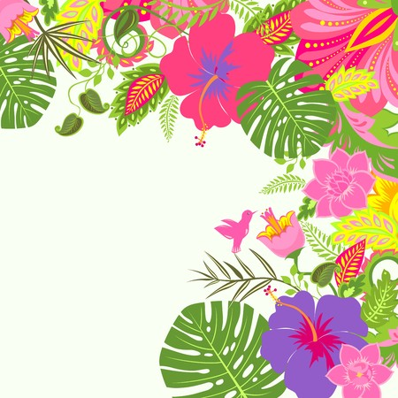 summery: Tropical summery background
