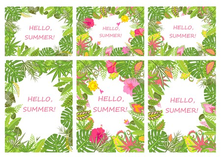 summer holiday: Tropical backgrounds for summer holiday