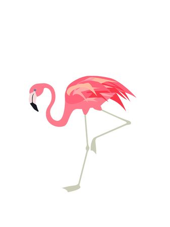 A Vector illustration with cute pink flamingo. Paper flat design with exotic bird Illustration
