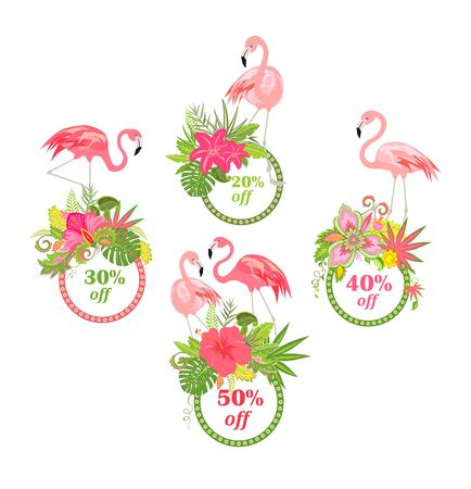 Offer for summer sale with beautiful floral labels and flamingo.