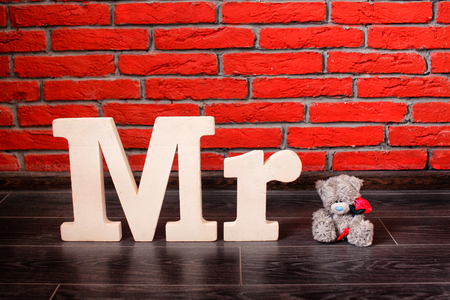 mr: Sign Mr with with a teddy bear. Horizontal.