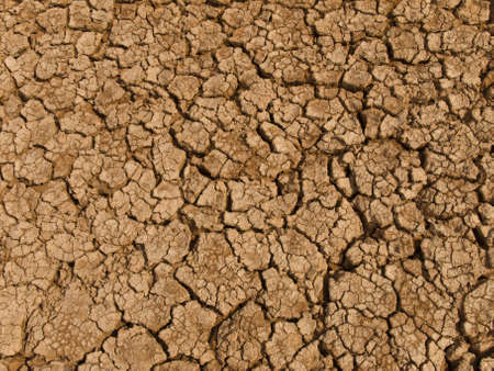 waterless: A baked earth soil after a long drought.