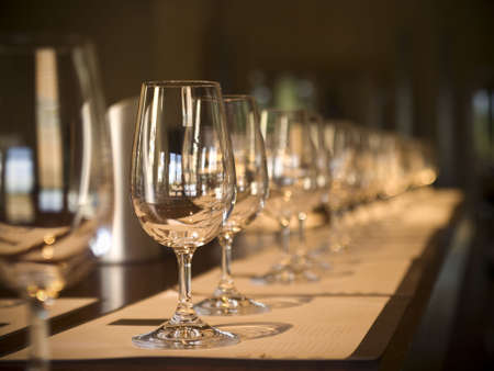 A long row of empty glasses before the wine tasting starts. Selective focus. Stock Photo