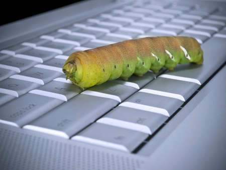 Macro shot of a caterpillar over a computer keyboard. photo
