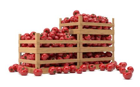 dozen met tomaten Stockfoto