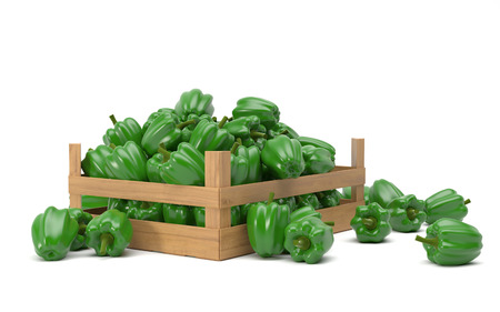 Groene paprika Stockfoto