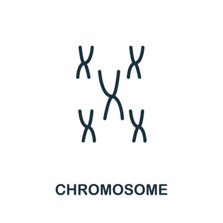 Chromosome icon. Simple line element from biotechnology icons collection. Outline Chromosome icon for templates, software and infographics.