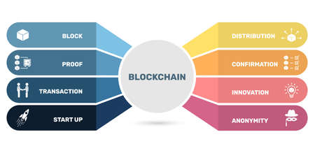 Vector infographic template Blockchain template. Can be used for process diagram, presentations, workflow, banner with blockchain icons. Vektorgrafik