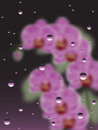 bush mesh: Pink Orchids With The Drops Of Water Illustration, Rainy Window With Orchids Background, Orchids Rain Background, Flowers behind the glass,  drops of water on glass vector background