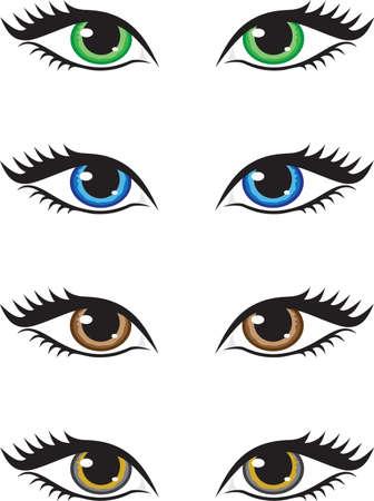 ojos marrones: Cuatro pares de ojos de distintos colores, verde, azul, marr�n y gris. Ilustraci�n vectorial. Vectores