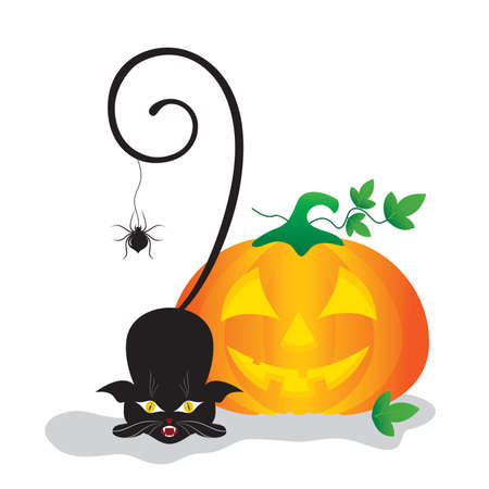 superstitious: Halloween clip-art with pumpkin, spider and a black cat.
