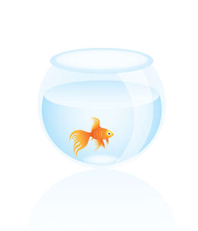 Vector illustration of a little goldfish in aquarium. Stock Vector - 5435302