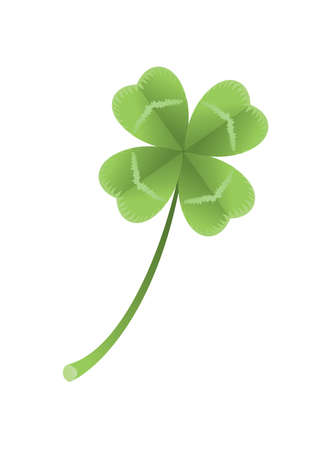 Vector illustration of a clover with four leaves on white background.